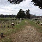 Foto de Carnton Plantation