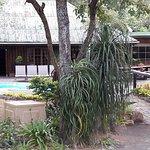 Foto de Ezulwini Game Lodge