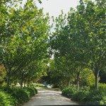 K1 driveway