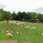 Photo of Swiss Valley Hip Resort