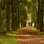 Schlosspark Matzen