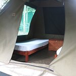 Comfortable safari tents with twin beds