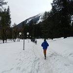 Betaab valley in March