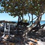 Photo of Historic Virginia Key Beach Park