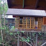 Permai Rainforest Resort Foto