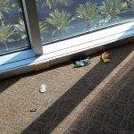 Hilton Anaheim-bild