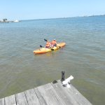 Kayaking on the Indian River was a blast!