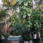 Foto de Hotel Playa del Karma