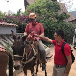 Our guide Valentin helps my husband get situated on his mule