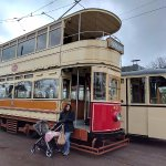 classic trams in operation