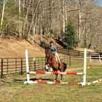 Indoor & Outdoor Lesson Arenas