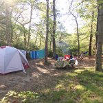 Our Spacious Campsite