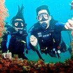 Photo of Cartagena Divers