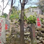 Komagome Fuji Shrine Photo