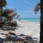 Caladesi Beach at its finest!