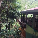 Photo of Nuts Huts Resort