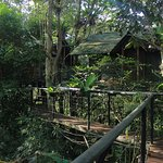 Foto de Khao Sok Tree House Resort
