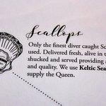 Our scallops supplier