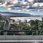 Foto de Novotel Wollongong Northbeach