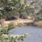 Naoshima Dam