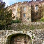 Castle elevation
