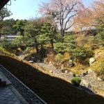 Photo of Shokokuji Temple