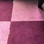 Carpet at reception