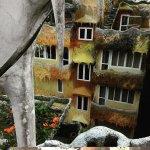 Photo of Crazy House
