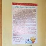 Wild Eggs Manifesto.