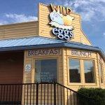 Wild Eggs.
