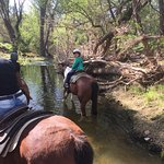 never rode a horse through a creek before--very cool!