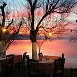Kavos Psarotaverna Restaurant