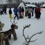 Lapland Safaris Photo