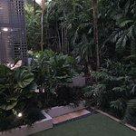 Coconut Grove Apartments Photo