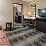 Suite Room With Pullout Couch