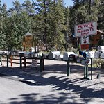 Quaint Mount Charleston town with mailboxes.