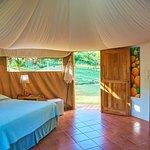 Bedroom interior with natural wood accents 'Las Carpas'
