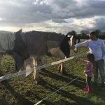 Brittons Farm Foto