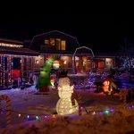 Merridale Courtyard Light-up