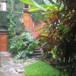 Jardín interior un pequeño paraiso