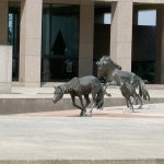 Mustangs of Las Colinas-Another View