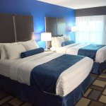 Foto di Best Western Plus Birmingham Inn & Suites
