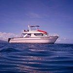 Taveuni Explorer