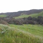 Beautiful drive to Jalama Beach Park, Santa Barbara County, CA.