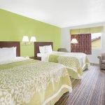 Tree Queen Suite Bed