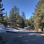 Photo de Idyllwild RV Resort