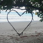 Photo of Cape Tribulation Beach House