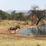 Photo of Mount Zion Tours and Travels