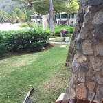 Peter Island Resort and Spa ภาพถ่าย