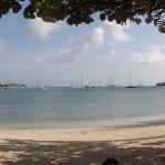 Calabash beach and Prickly Bay Marina